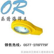 BLC8610海洋王道路燈 防爆投光燈